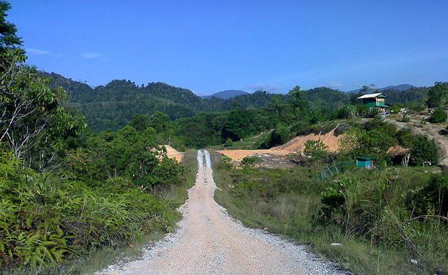 Road at Bayaweaver nest