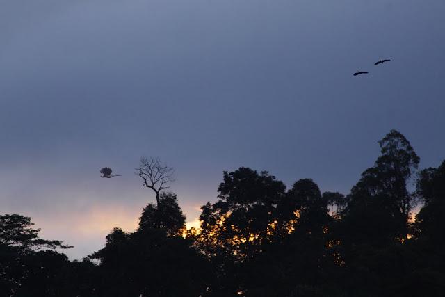 Sky Watch over Raub, Malaysia