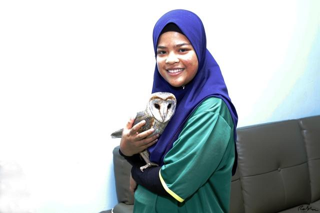 Barn Owl as Pet